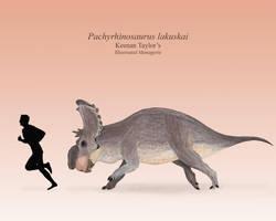 Pachyrhinosaurus lakuskai by IllustratedMenagerie