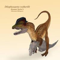 Dilophosaurus by IllustratedMenagerie