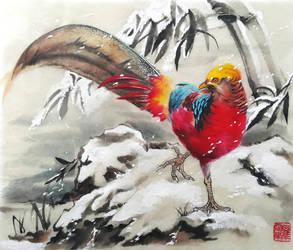 Golden Pheasant 1 by toedeledoki