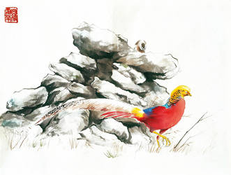 Golden Pheasant 2 (Electric Boogaloo) by toedeledoki