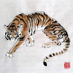 Tiger, tiger burning bright by toedeledoki