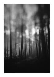 dvs422 by ForrestBump
