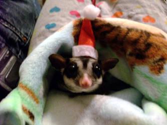 Merry Christmas by deidara120512