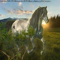 Grulla-PH by HorsesAreMyLife09