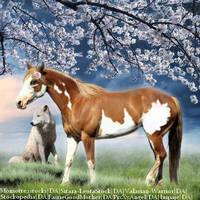 PaintHorse02 by HorsesAreMyLife09