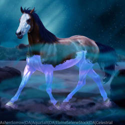 Heeavafin by HorsesAreMyLife09