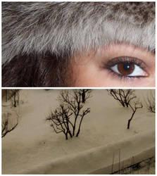 Cold snow by NefeRj