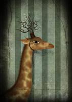 La girafe by missdine