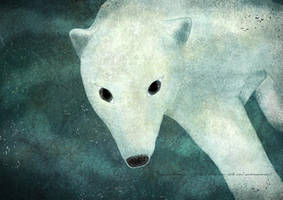 Polar bear under the water by missdine