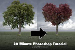 Photoshop Tutorial - Turn a tree into a heart by kevron2001
