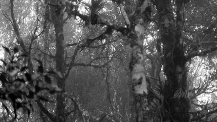 Branches by VirusRedsox