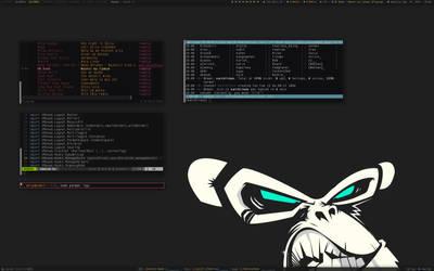 CodeMonkey [X]monad by samirkahvedzic