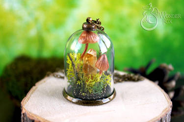 Mushrooms! by Wonder-fox