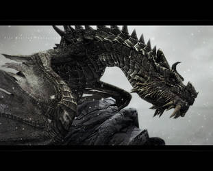 PaarthurnaX by MRBee30