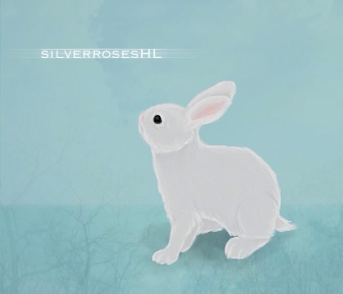 silverrosesHL's Profile Picture