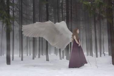 Cold Outside by silverrosesHL
