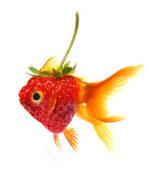 strawberry-fish by Pendalune
