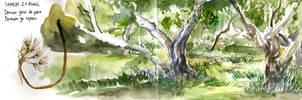 sketchbook 3 by Pendalune
