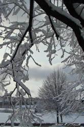 snow window by ogiedomane
