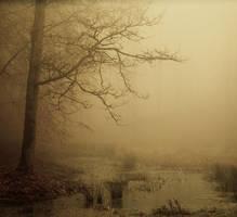Haunted pond II by Northstar76