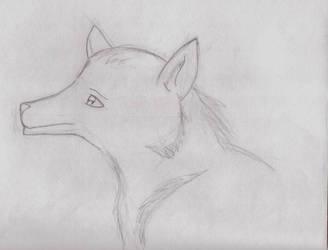 Fox sketch Commissions ex. by kittykatz55