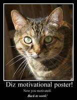 Motivational Kitteh by amerindub