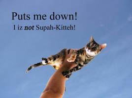 Supah Kitteh! by amerindub