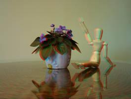 3D Still Life by amerindub