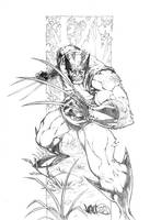 Wolverine Print Pencils by MicahJGunnell