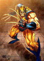 Wolverine colors by BoOoM by MicahJGunnell