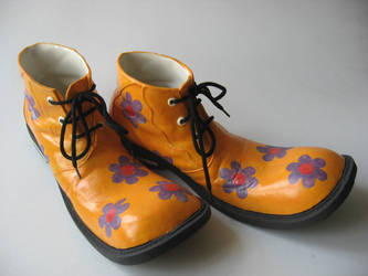 clown shoes 4th pair by saboulogne