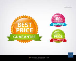 Guarantee Icon by designstub