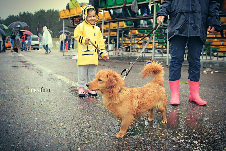 Happy in the rain by K-84