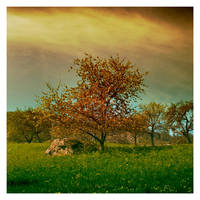 Eden by leonard-ART