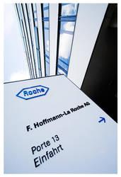 Roche by leonard-ART