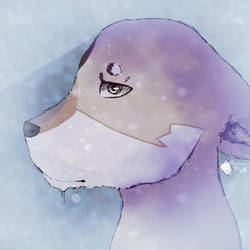 Pretty Lobo by DragoLobo