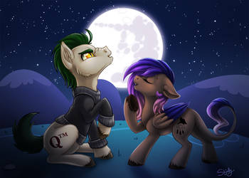 Duet by Moonlight by Skjolty