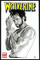 WOLVERINE Sketch Cover II by S-von-P