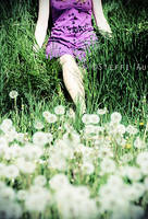 my field of paperflowers. by gloeckchen