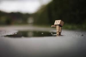 little rain. by gloeckchen