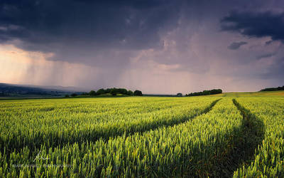 Endless Storms by markborbely