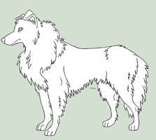 Collie lineart by J-Dove