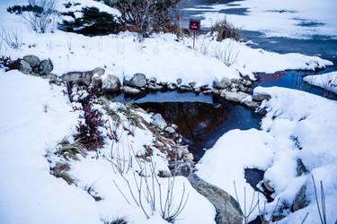 Winter by Inarita