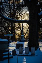 Mount Auburn Cemetery IV by Inarita