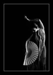 fLamenco.. by mhtp