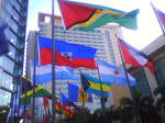 Flags of the Caribbean 2 by Anisa-Mazaki
