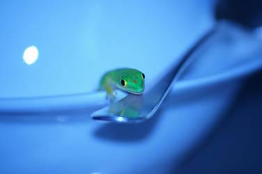 Hi, I'm a lizard ! by Samael94