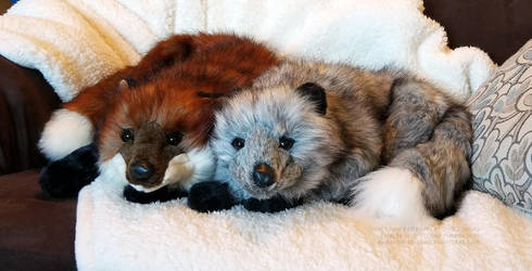Ditz Designs Foxes by AhrendalePlush
