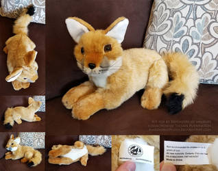San Joaquin Kit Fox by Defenders of Wildlife by AhrendalePlush