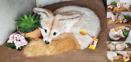 Steiff Fennec Fox by AhrendalePlush